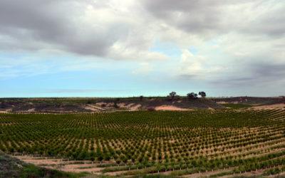 Finca de Ontiñena, Huesca